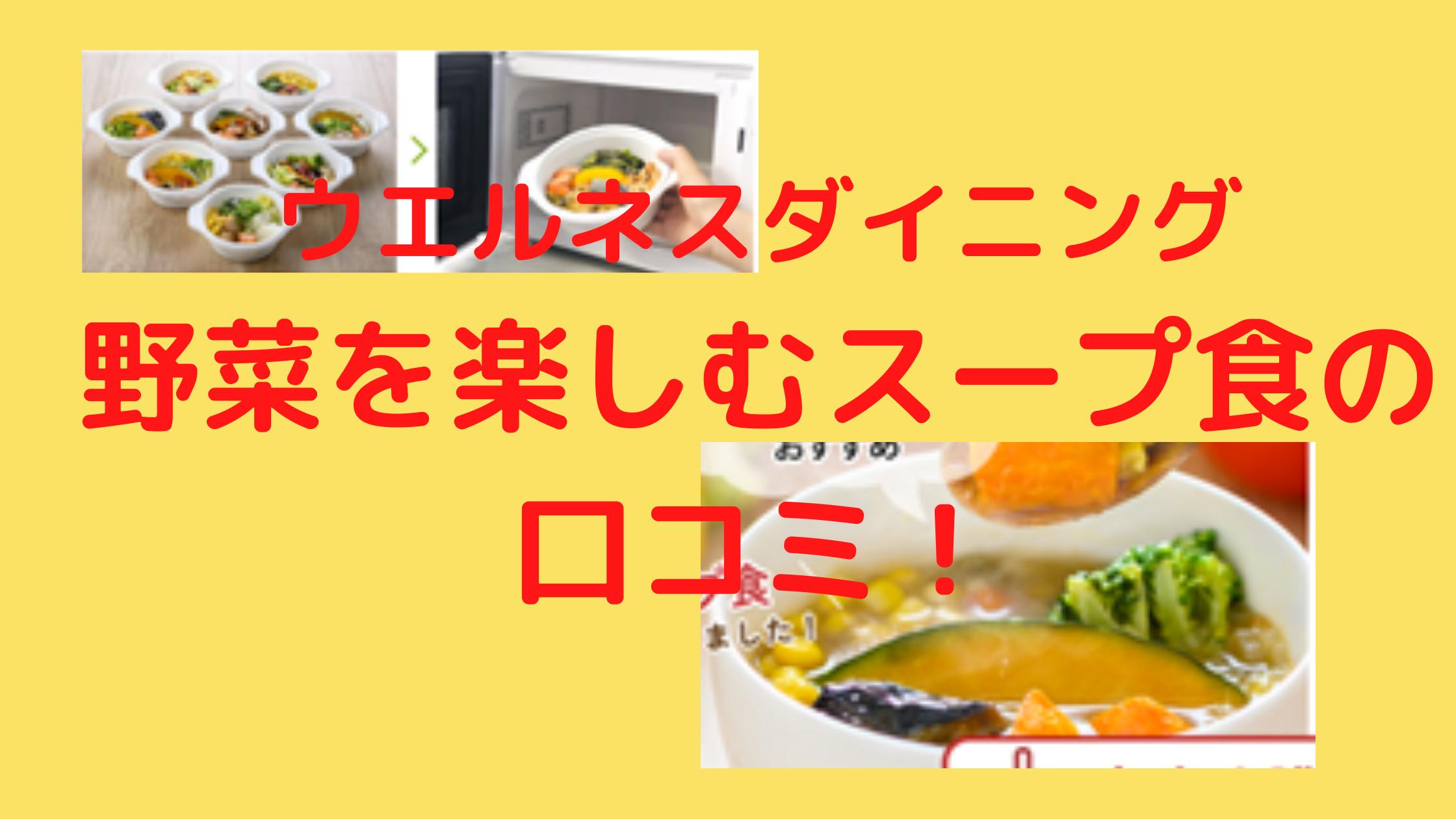 ウェルネスダイニング野菜スープ食